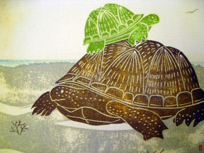 2013-turtle-canvas