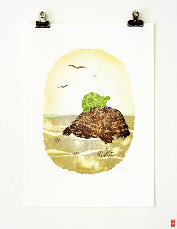 2013-turtle
